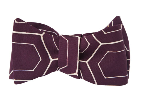 Cassidy Bow Tie