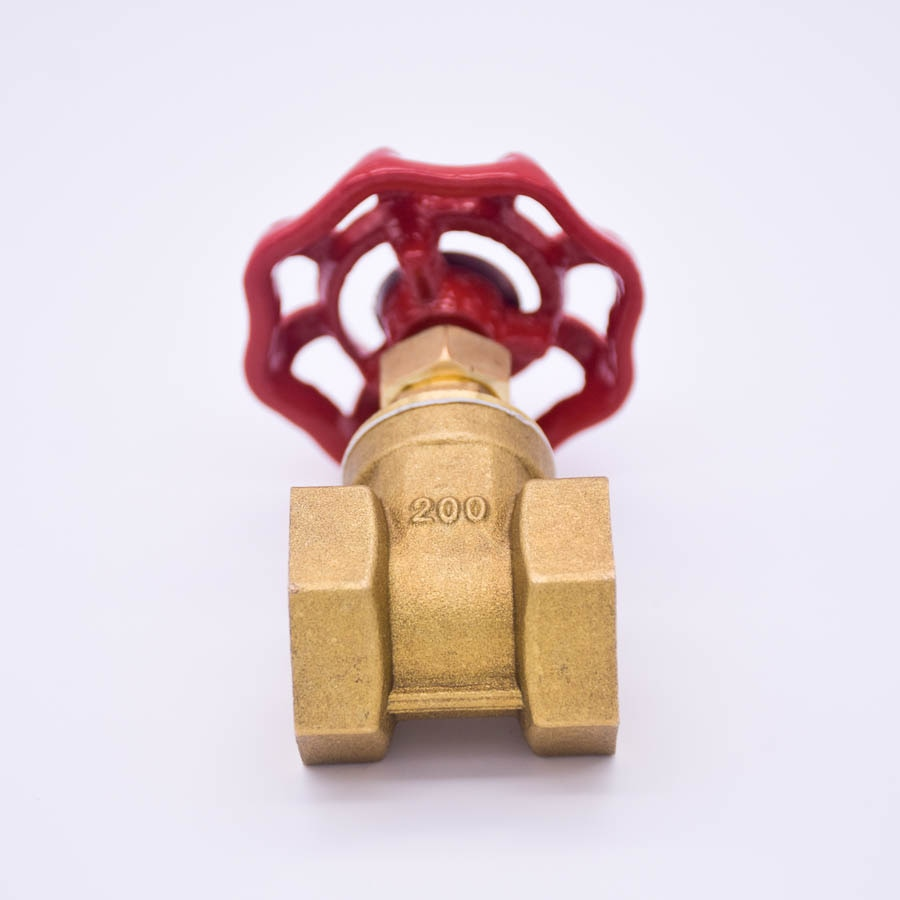 3/4 in. Brass FIP x FIP Gate Valve