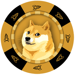 Rocket Shibe Poker Chip