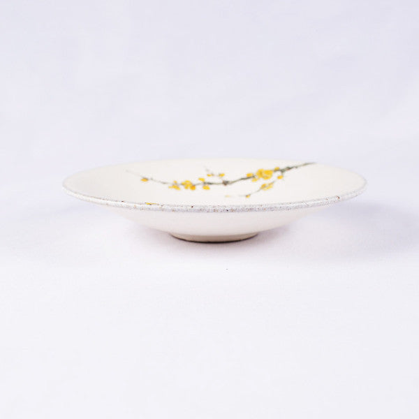 Hand-Painted Artisanal Chinese Plate, Plum Flowers