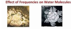 Water Exposed To Schumann Waves Or Schumann Frequencies Before And After