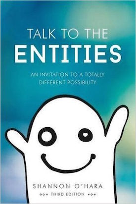 Talk To The Entities Book by Shannon O'Hara