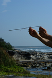 Dowsing Or Divining In Action