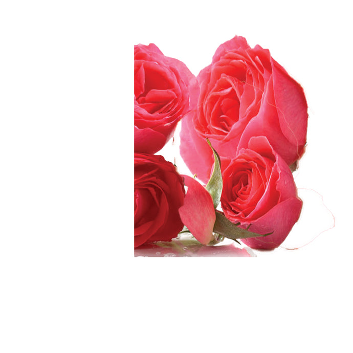 English Rose Fragrance Oil - Sameh Zahda Custom Hair Care