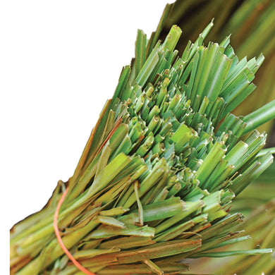 Lemongrass Essential Oil - Sameh Zahda Custom Hair Care