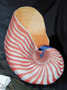 Nautilus Shell-Fine Art Prints-Fullamoon Designs