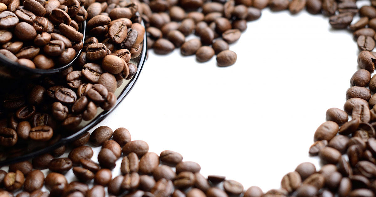 Flavorbean Might Be Your Next Favorite Coffee, and Here's Why