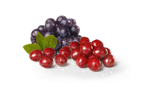 Cran Grape Splash - 100ml - Zion-Vape