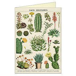 Cacti & Succulents Card