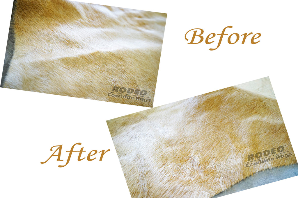 How To Remove Creases From Your Cowhide Rug Rodeo Cowhide Rugs