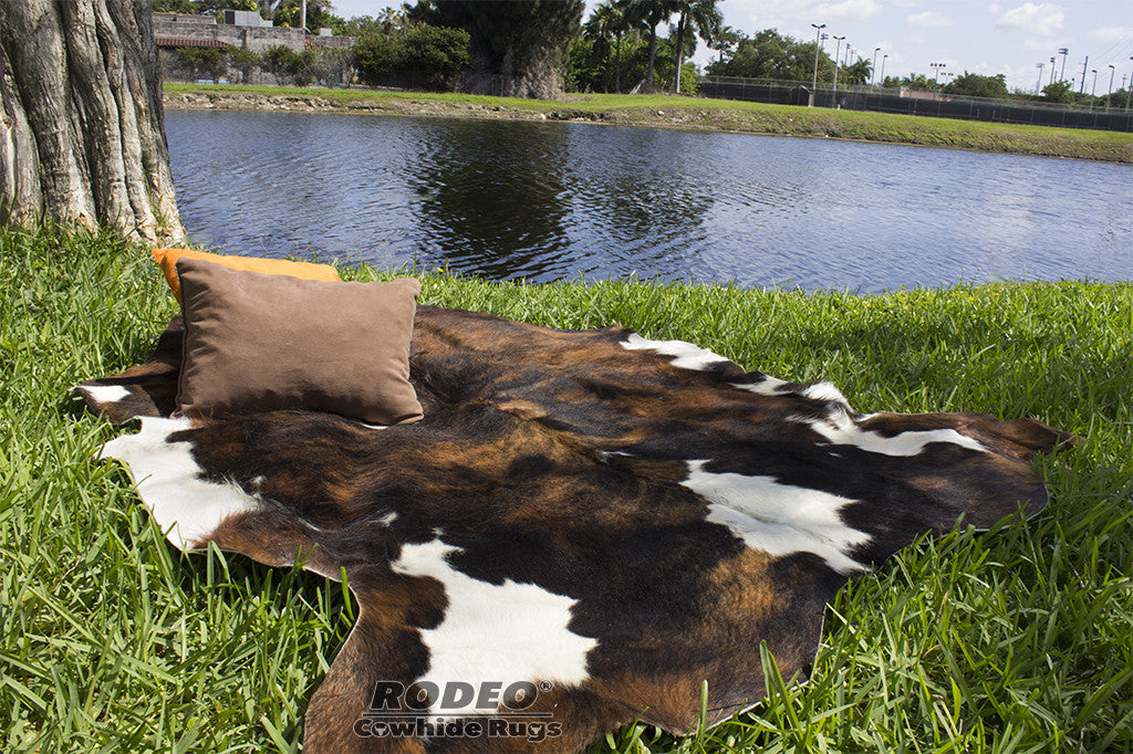 Why Buy an Authentic Cowhide Rug?