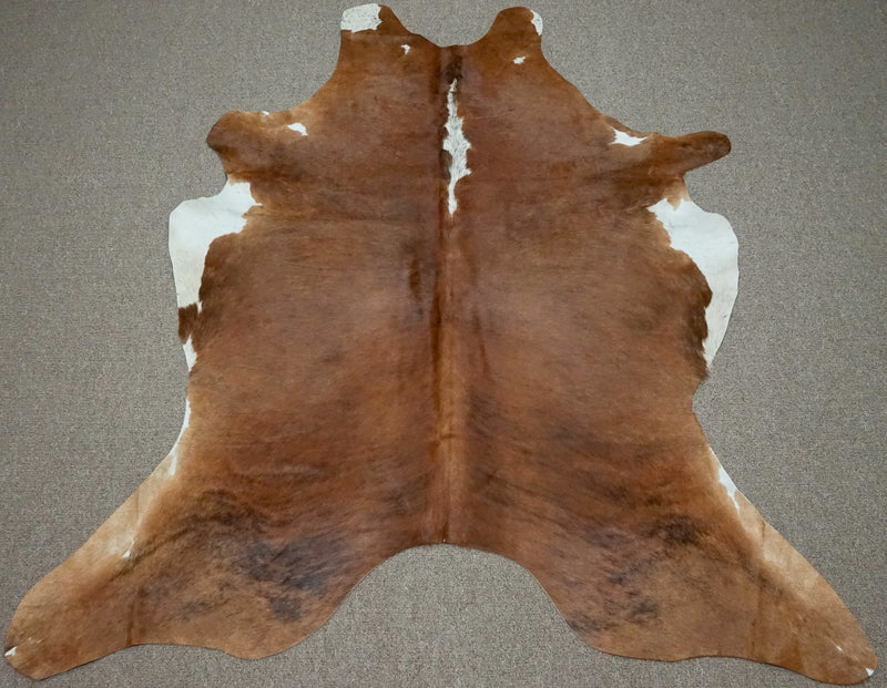 Large Brazilian Brown with white belly Cowhide rug 6.5 x 5.6 ft - 3049 - Rodeo Cowhide Rugs
