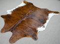 Large Brazilian brindle with white belly Cowhide rug 5.8x 5.5 ft -3099 - Rodeo Cowhide Rugs