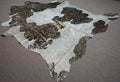 Extra Large Brazilian Exotic Cowhide rug 7.6 x 6.11ft -3485 - Rodeo Cowhide Rugs