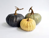 """Autumn Harvest"" Pumpkin Set"