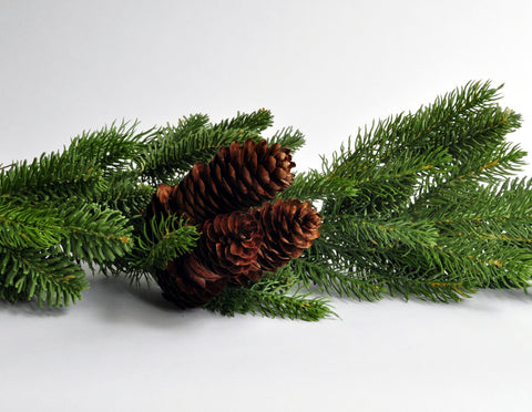 Forest Fir Garland