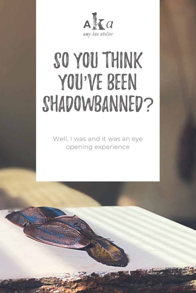 So You Think You've Been Shadowbanned?!?! – Amy Kae Atelier
