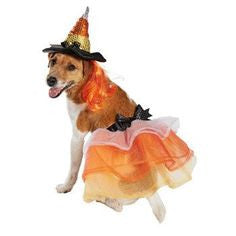 Halloween Bootique Witch Dog/Cat Costume