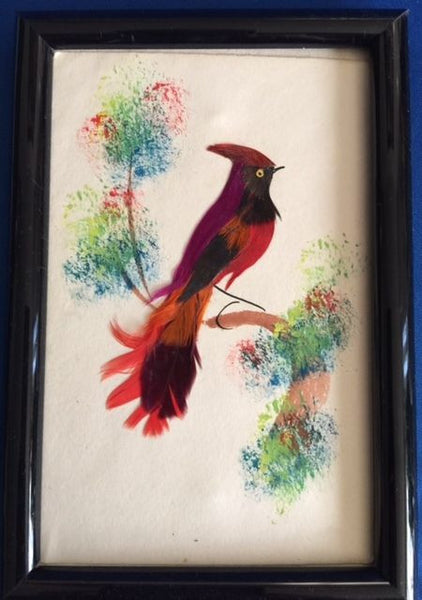 Feather Framed Handcrafted Exotic Bird Artwork