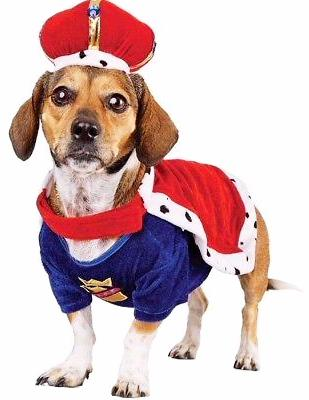Bootique His Royal Dogness, Dog Halloween King Costume, Small