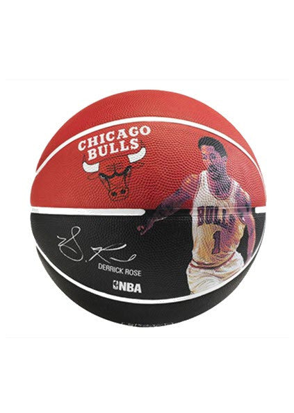 Spalding NBA Derrick Rose Player Signature Basketball