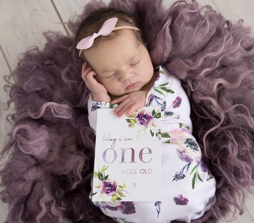 The Harvey Rose Baby Milestone Cards