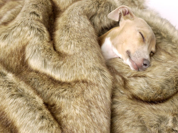 Faux Fur : Buy or Not?