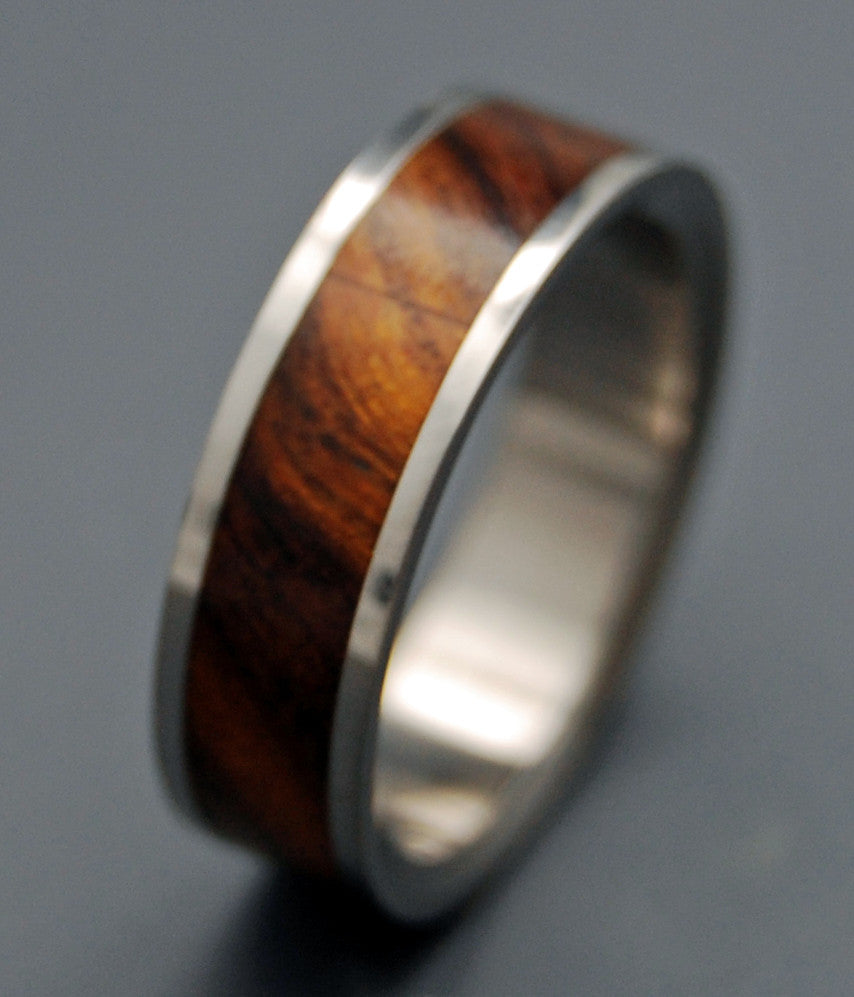 Mens Titanium Wedding Rings Minter and Richter Designs