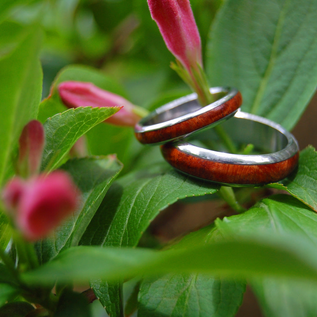 Every Drop of Amboyna | Titanium Wooden Wedding Rings