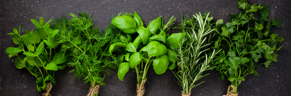 Top 10 healthy herbs and how to use them