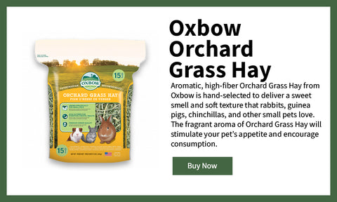 Oxbow Orchard Hay