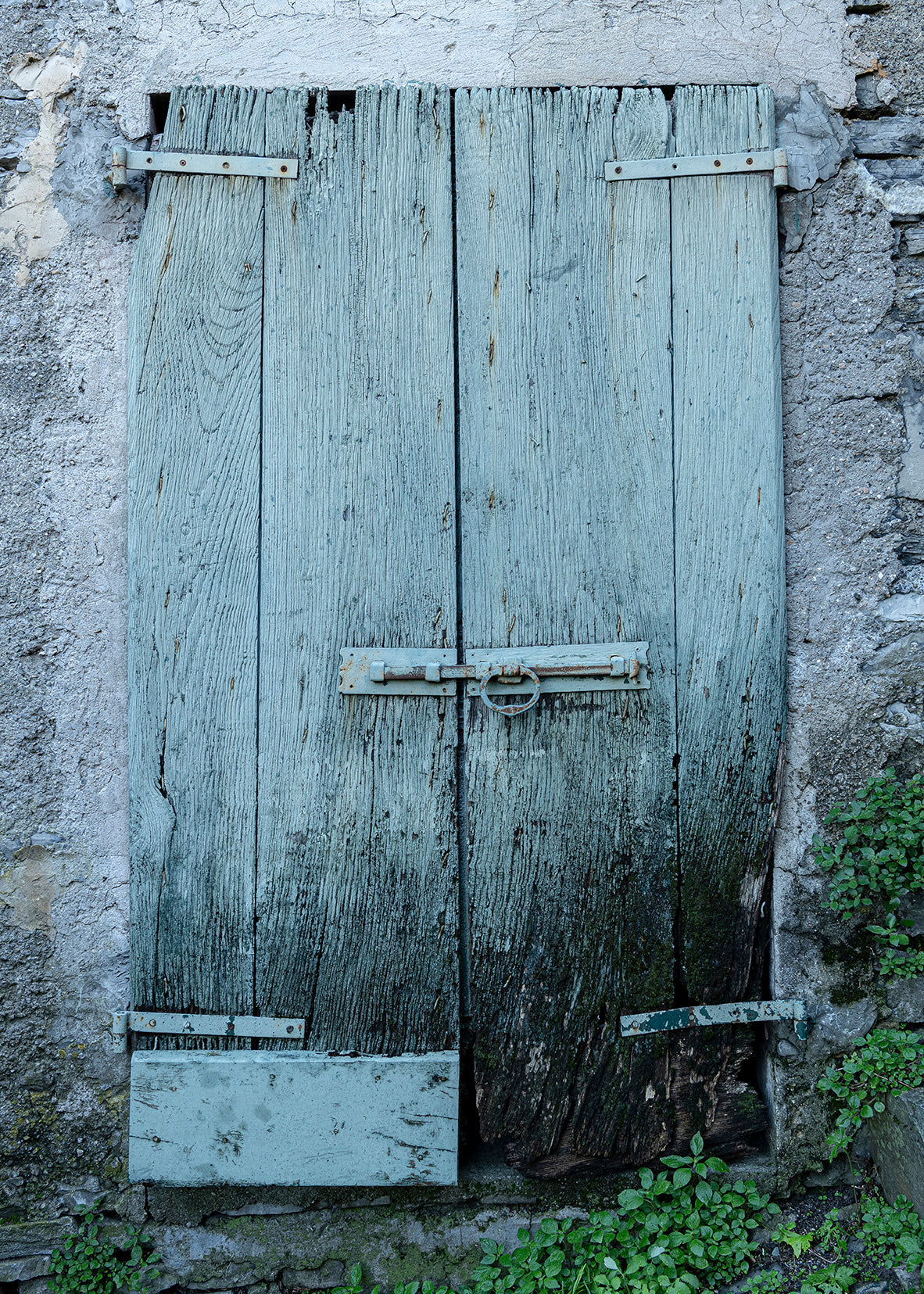 Old Green Plank Door Near Castello di Vezio