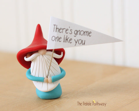There's Gnome One Like You - Greeting Gnome 0428 - ThePebblePathway