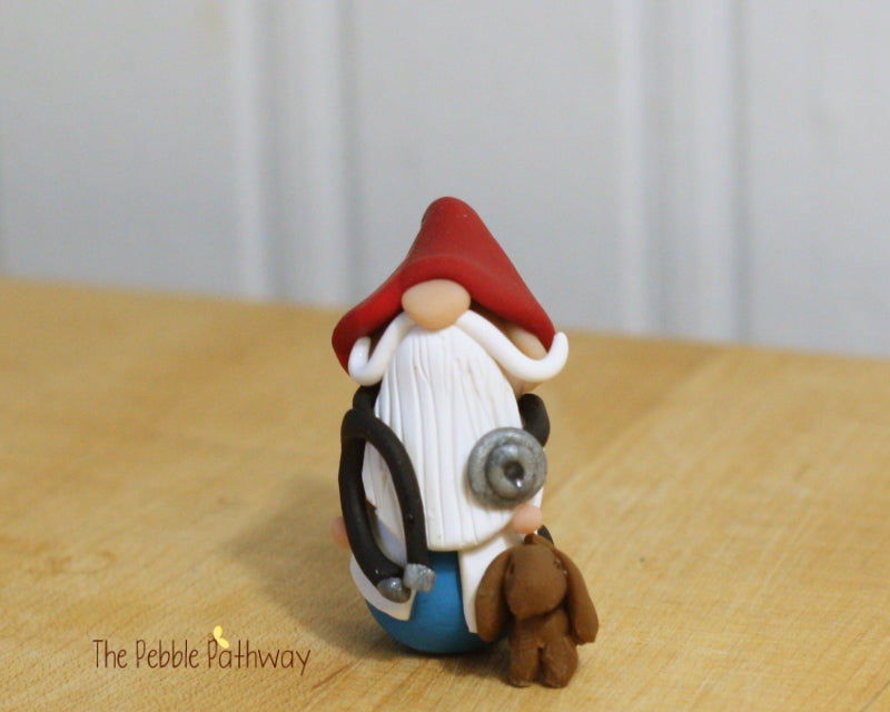 Veterinarian Gnome - Gift for Veterinarian or Aspiring Veterinarian - ThePebblePathway