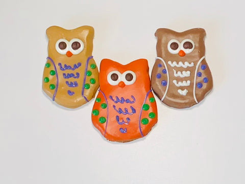 Owl Dog Treat(3)