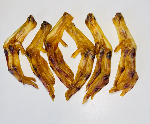 Duck Feet 6 pack