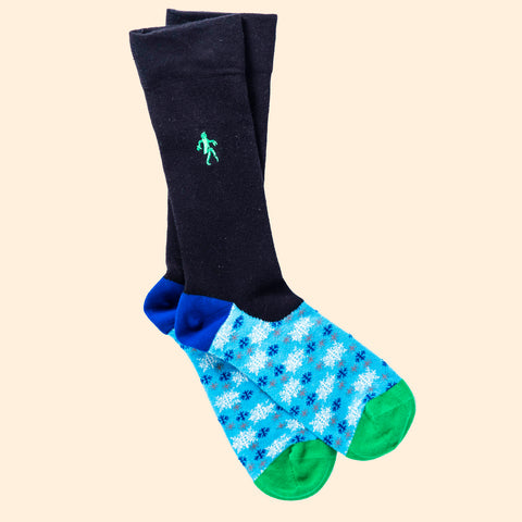 William Herschel Socks
