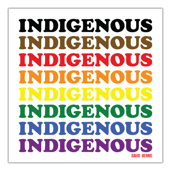 Indigenous LGBTQ+ vinyl stickers by David Bernie  Indigenous Native American First Nations American Indian Aboriginal
