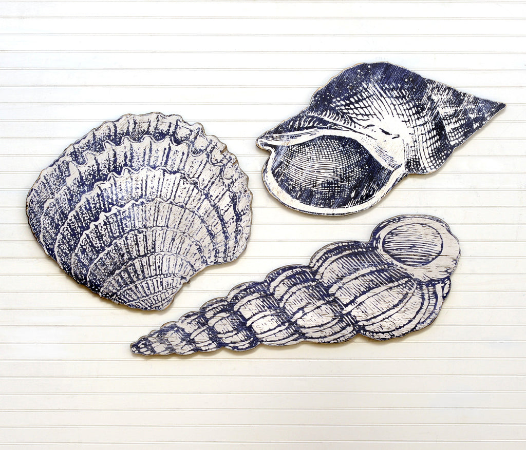 Giant SeaShell Set - Haven America