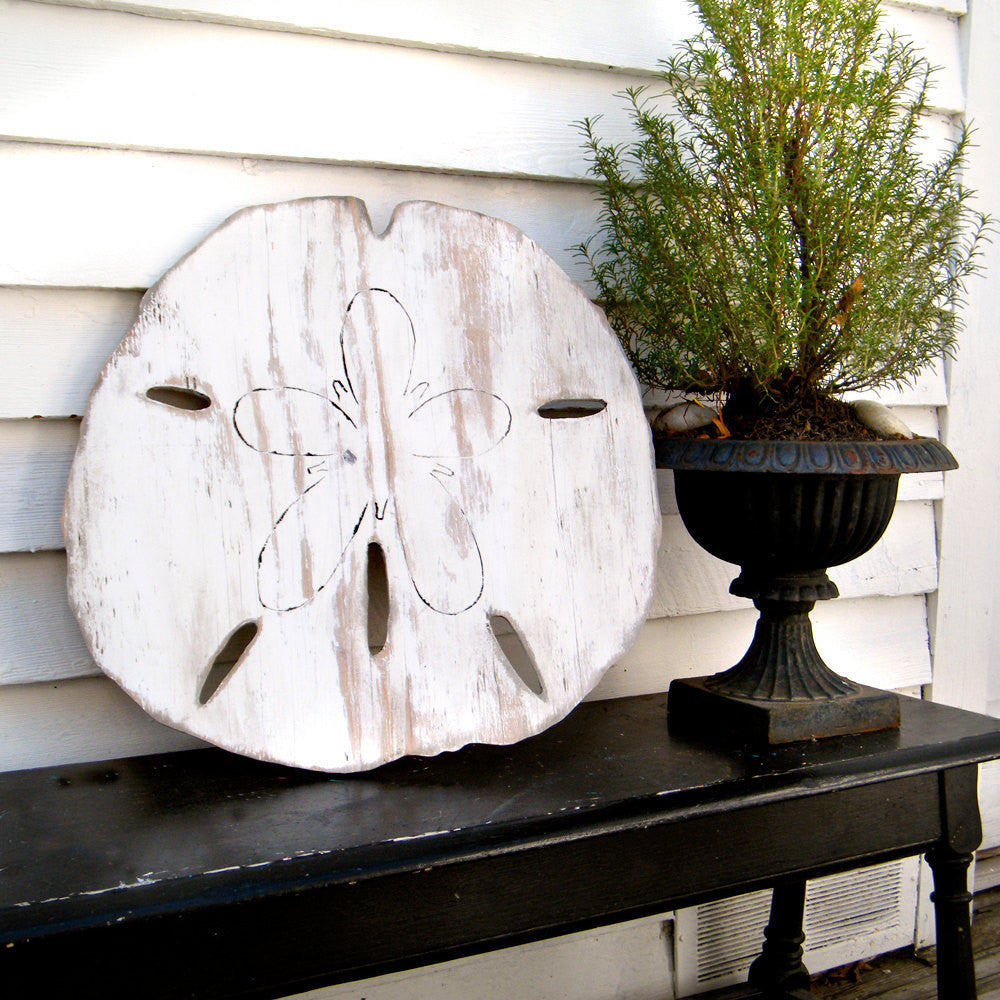 Giant Sand Dollar Wall Decor - Haven America