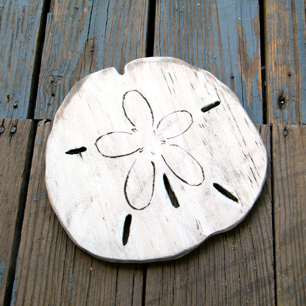 Sand Dollar Wall Art - Haven America