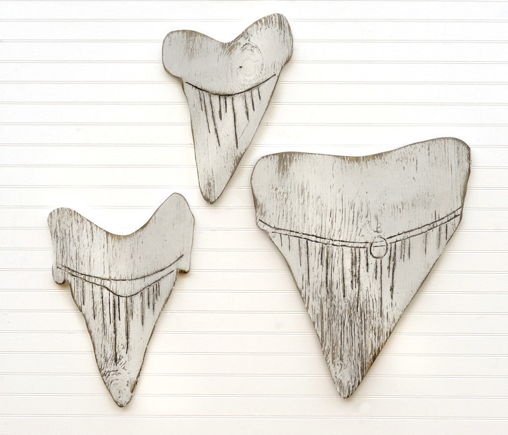 Shark Teeth Set of 3 - Haven America