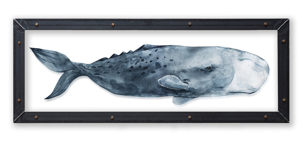 Sperm Whale Print with Metal Frame - Haven America