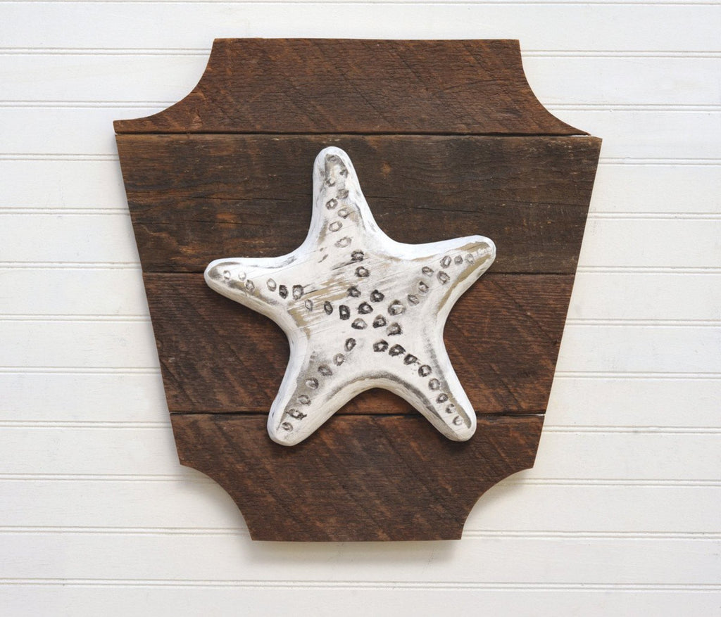 Starfish Trophy Head - Haven America