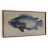Anabas Fish Wall Art Framed - Haven America