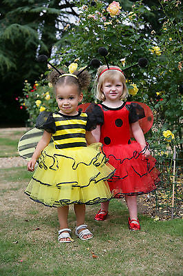 TODDLER LADYBIRD FAIRY COSTUME