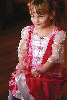 GIRLS PINK PRINCESS POSY COSTUME