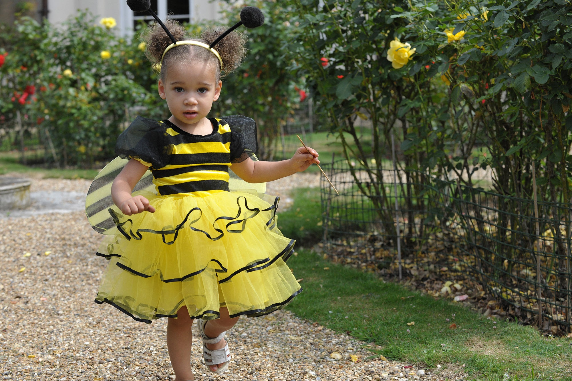 Girl/'s Yellow /& Black Bumblebee Fancy Dress Costume World Book Nature Kids Party