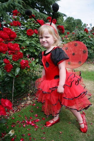 GIRLS LADYBIRD FAIRY COSTUME