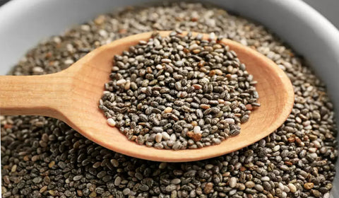 chia seeds protein rich